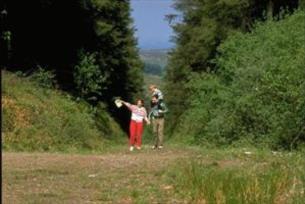 Walking and hiking, Tipperary   Ireland.com 8d4ab86e24e