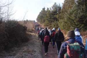 Walking and hiking, Glen Of Aherlow   Ireland.com 07ed461a4d1