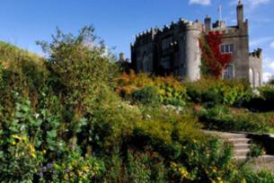 Birr Weather - Met ireann Forecast for Birr, Ireland - The Irish
